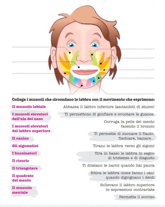 Percorsi Didattici Dott Den Tini Dentista Dei Bambini